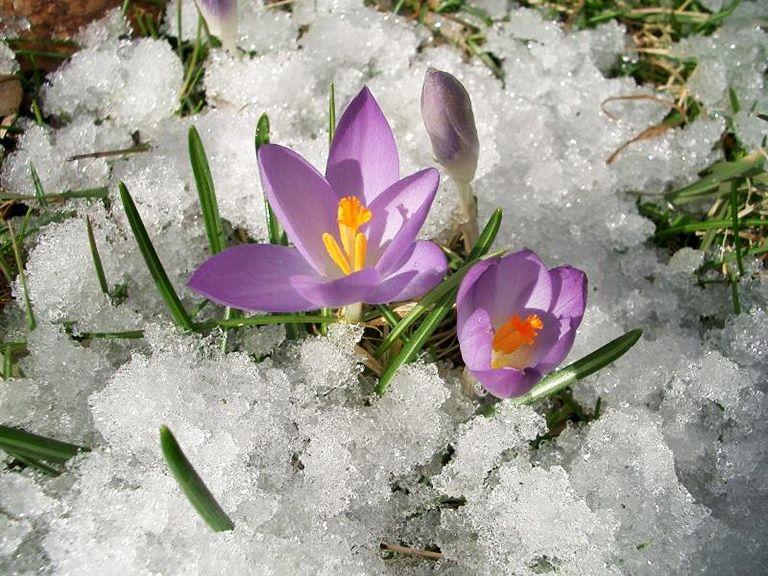 Акция «Счастливые дни» в марте и апреле
